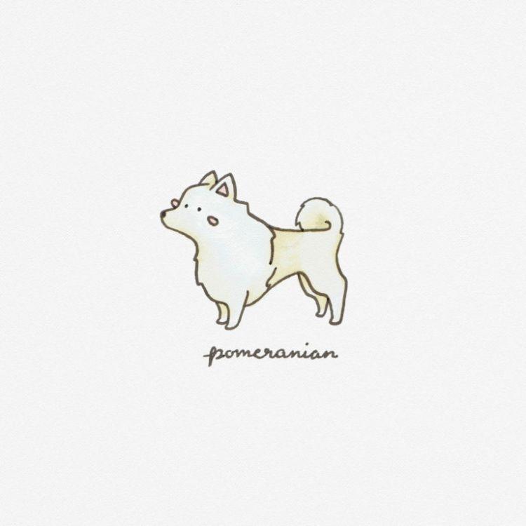 Pomeranian, copic marker illustration
