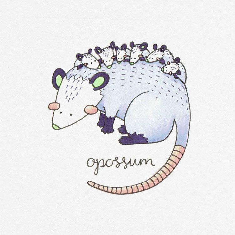 Opossum, copic marker illustration