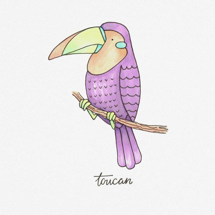 Toucan, copic marker illustration